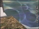 скачать surf_dokey_beta